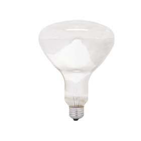 Ampoule chauffante 250w